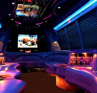 18 Passenger Party Bus Rental San Diego